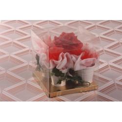 Mes jolies fleurs Rouge - Coffrets et idées cadeaux - Dragées Braquier