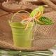 Feuille sur seau vert