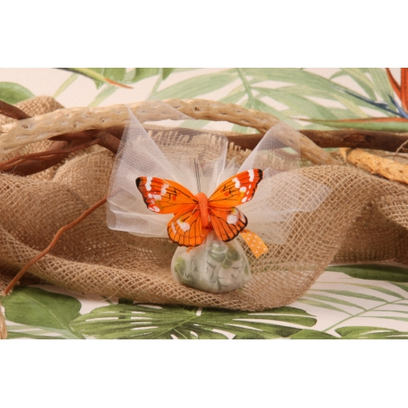 Papillon orange sur tulle