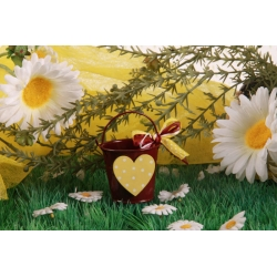 Cœur jaune sur seau bordeaux