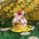 Perle sur boule - Boîte à dragées, Collection Mariage sur l'Herbe