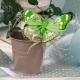 Papillon vert sur seau gris
