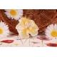 Papillon sur double tulle dentelle - Contenant à dragées