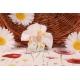 Papillon sur tulle dentelle blanc - Boîtes à dragées - Dragées Braquier