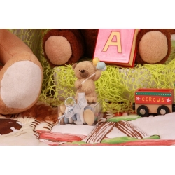 Ourson sur boîte - Boîtes à dragées - Dragées Braquier