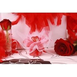 Cœur rouge sur tulle - Boîtes à dragées - Dragées Braquier
