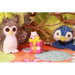 Hibou rose sur boîte carrée - Boîtes à dragées - Dragées Braquier
