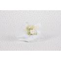 Piquet rose sur tulle blanc