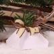 Sapin sur florette blanche