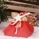Etoile blanche florette rouge