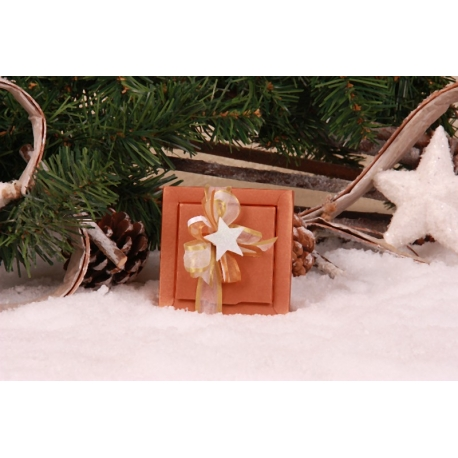 Etoile de Noël blanche
