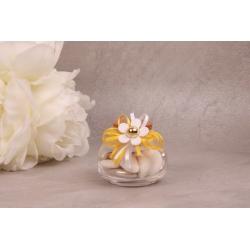 Fleur blanche sur pot